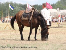 Hungarian Festival Stock 114 by CinderGhostStock