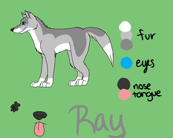 Ray Ref 2013 by CursedFire