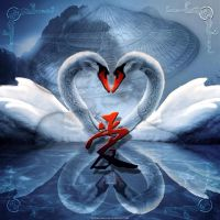 Swans In Love by Fotomonta
