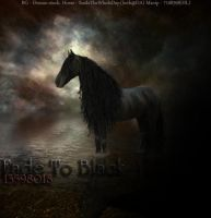 Friesian Manip - Fade To Black by xSweet-blasphemyx