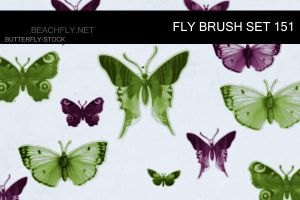 butterfly-stock_brush set 151 by butterfly-stock