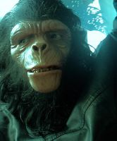 PLANET OF THE APES  CHIMP MAKE-UP2 by Legrande62