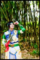 Dynasty Warriors 03 by direngrey304