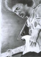 King of Eletric Guitar by John-Indian