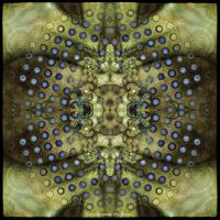 Ab09 Beauty of Symmetry 33 by Xantipa2