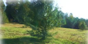 Tree painting by amy-WednesdaysChild