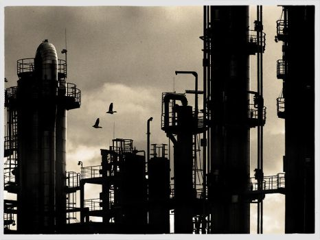 plastic industry by rawimage