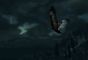 Night Eagle by MotPArt