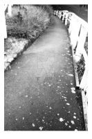 Along the Footpath by kendravixie