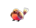 Robin by Spice5400