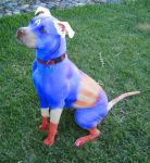 Captain American Pit Bull Terrier by rewriteme
