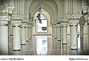 Inside the Golden Mosque by lee-sutil