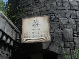 Triwizard Entrance by Yoda-Vaderworshipper