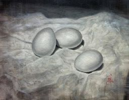 Eggs Still Life by iancjw