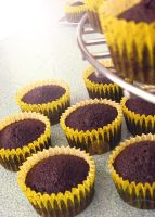 Chocolate Cupcakes by meechan