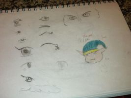 Eye practice (And Link) by Lunawolf2234