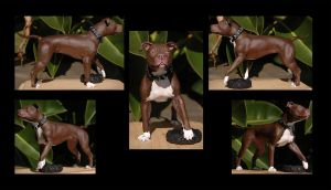 APBT Sculpture: Mia: Painted by rgyoung