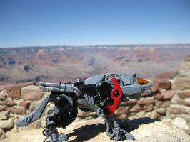 Red in the Canyon 3 by MidnightLiger0