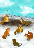 Marmots by Airy-F