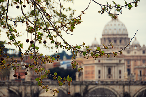 Rome at the Afternoon by Ana-D