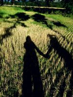 holding onto shadows by it-is-gee