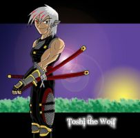Ninja Wolf by LordofNightsShadows