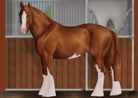 Eqcetera Clydesdale by weezapony