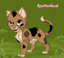 Warrior Cats Characters - Spottedleaf by Warriorcatscrazy