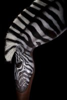 Zebra Leg.... bent by Battledress