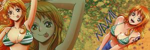 :..Nami..: Banner by HoneyXHoney