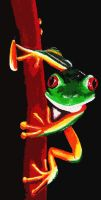 Red Eyed Tree Frog by RSImpey