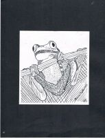 Frog Pen and Ink by Ikenna1