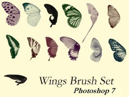 Butter Wings Brush Set - PS7 by DeviantNep