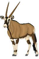 Widdle Gemsbok by Detangle