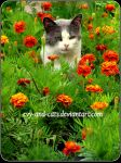 943 by evy-and-cats