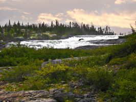 Canada, Untamed by LAPoetry-n-Photo