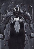 quikly sketch venom by LucaStrati