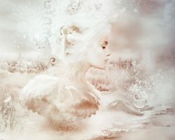 Winter Dream by AmandineVanRay