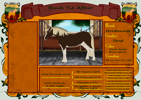3089 Black Tie Affair Sold to smileybear6 by AutumnCreekFarms