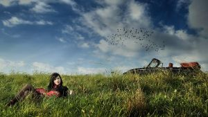 like the birds... by bcor