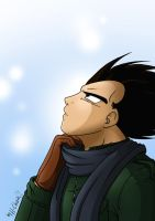 Winter - Vegeta by xH-Chanx