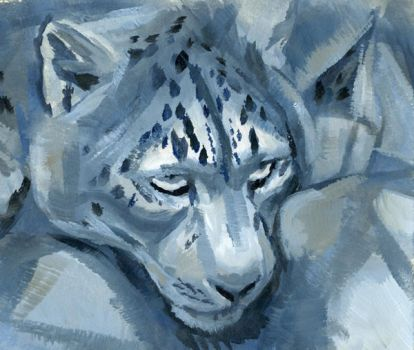 snow leopard by hibbary
