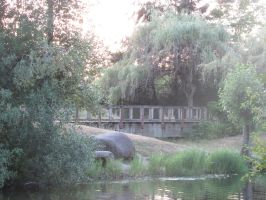 Sunset at Mill Pond Park (Auburn WA, USA) by dsimple