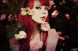 Roses by AmandaMarie89