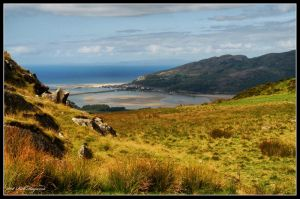 Barmouth Estuary by mym8rick