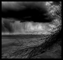 Storm by PhotoPurist