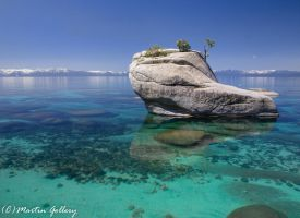 Bonsai Rock130503-17-Edit by MartinGollery