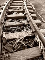 The Tracks by MaddLouise