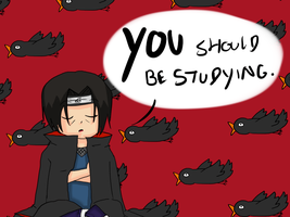YOU should be studying. by kitty4699