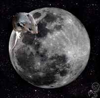 Mouse on the moon by Bamseline